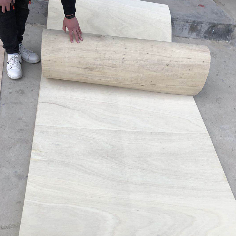 FLEXIBLE PLYWOOD(图1)